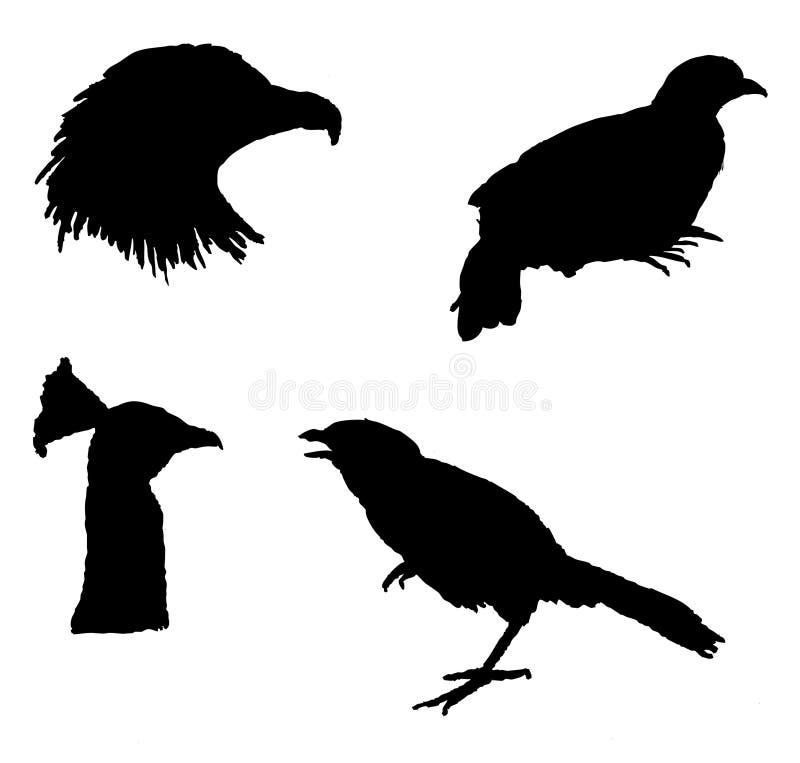 Het silhouet van de vogel stock illustratie
