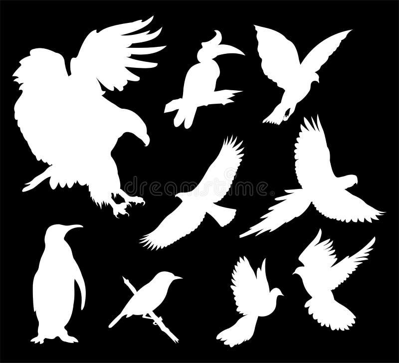 Het silhouet van de vogel vector illustratie