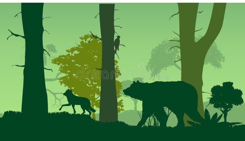 Het silhouet van de het wildaard, bos, draagt, wlf, groene bomen, royalty-vrije illustratie