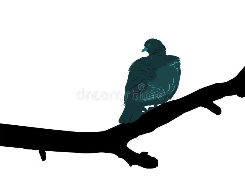 Het silhouet van een duif streek op een tak neer die op een witte achtergrond wordt geïsoleerd stock illustratie