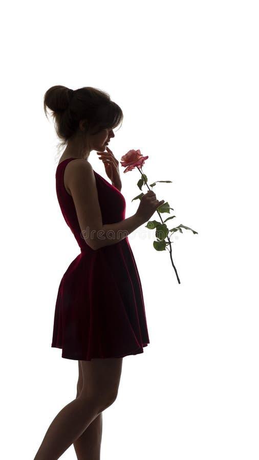 Het silhouet van een jonge romantische vrouw in een kleding en met nam in handen, cijfer toe van slank mooi meisje met een bloem  royalty-vrije stock afbeeldingen