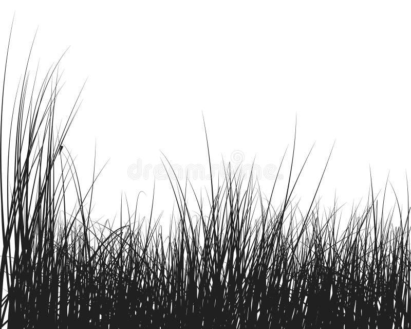 Het silhouet van het gras vector illustratie