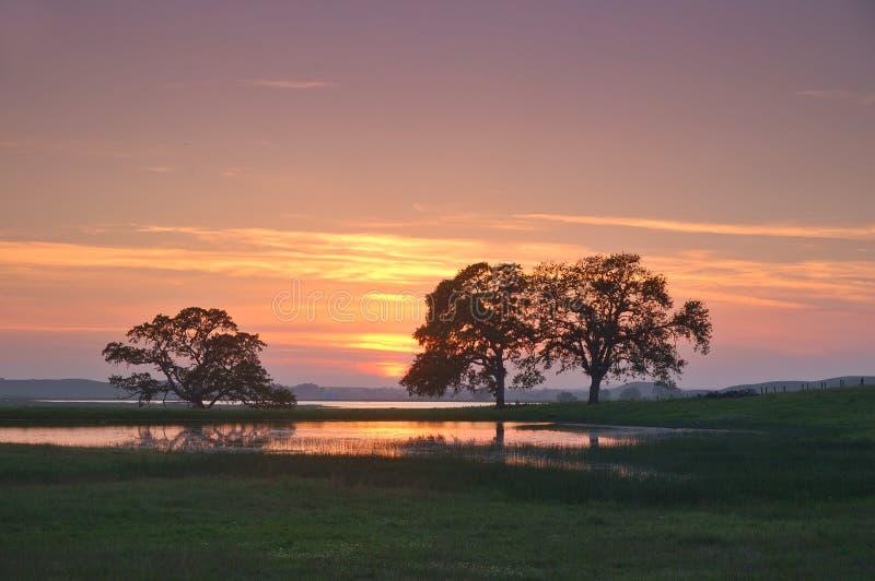 Het silhouet van het landschap royalty-vrije stock fotografie