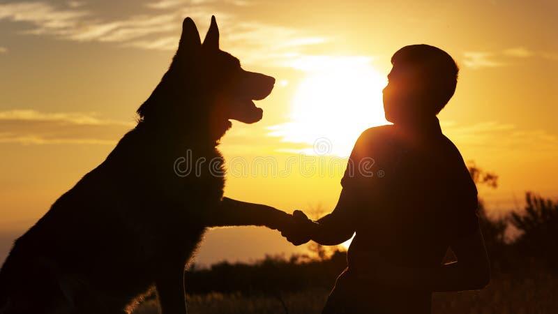 Het silhouet van jonge mens het schudden handtastelijk wordt zijn favoriete hond op een gebied bij zonsondergang, jongen met een  royalty-vrije stock fotografie