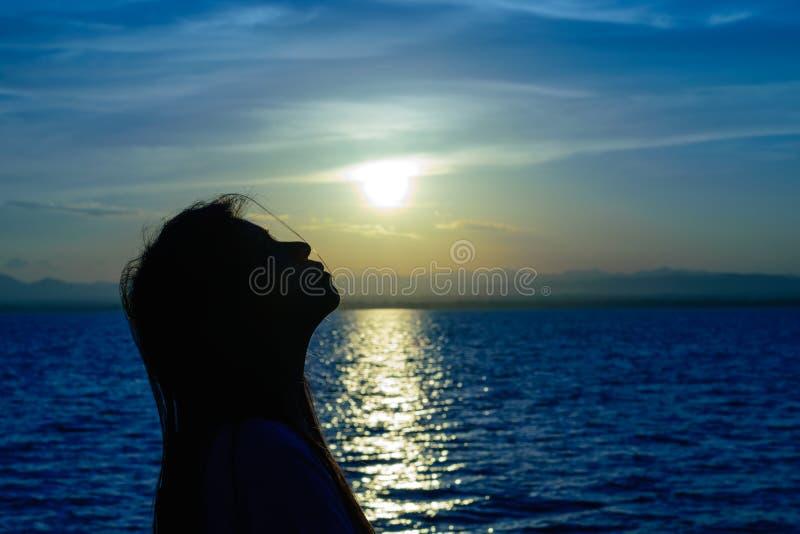 Het silhouet van Langharige vrouw royalty-vrije stock afbeelding