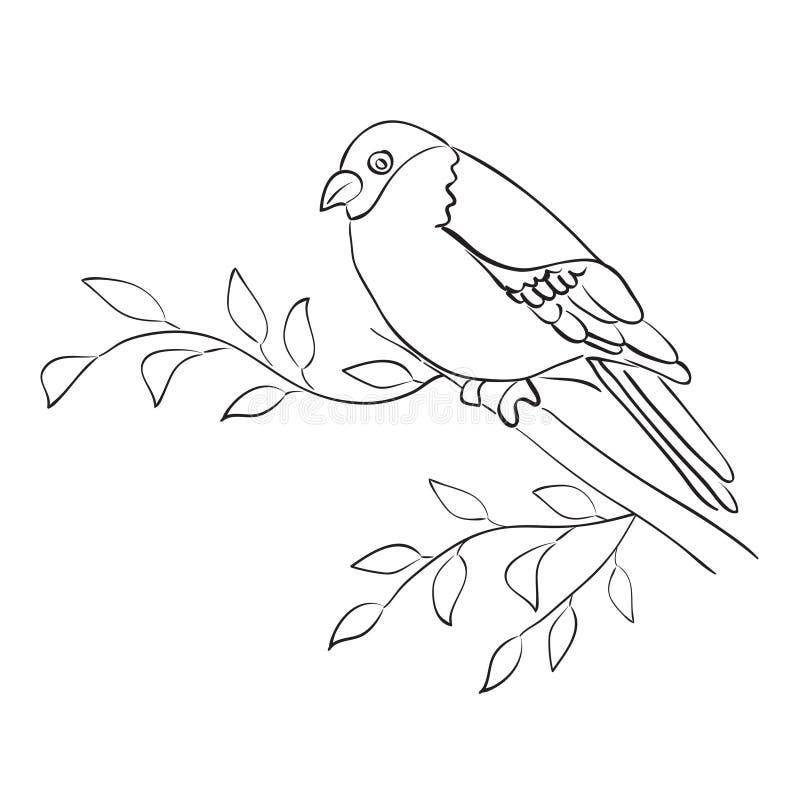 Het silhouet van vogel zit op tak - vectormus vector illustratie
