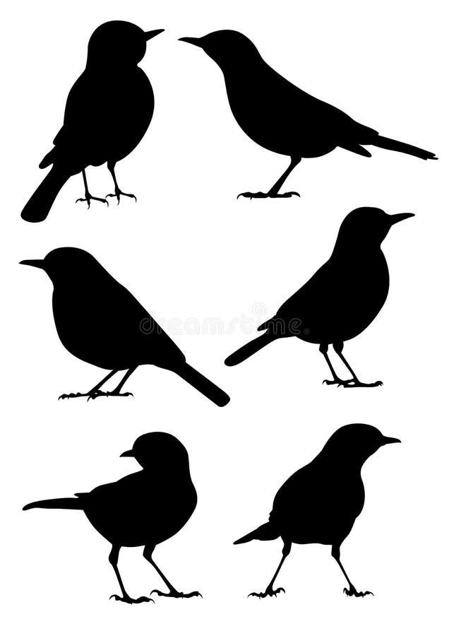 Het Silhouet van vogels - vector stock illustratie