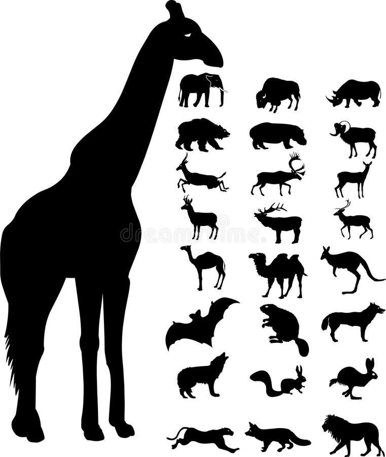 Het silhouet van wilde dieren stock illustratie