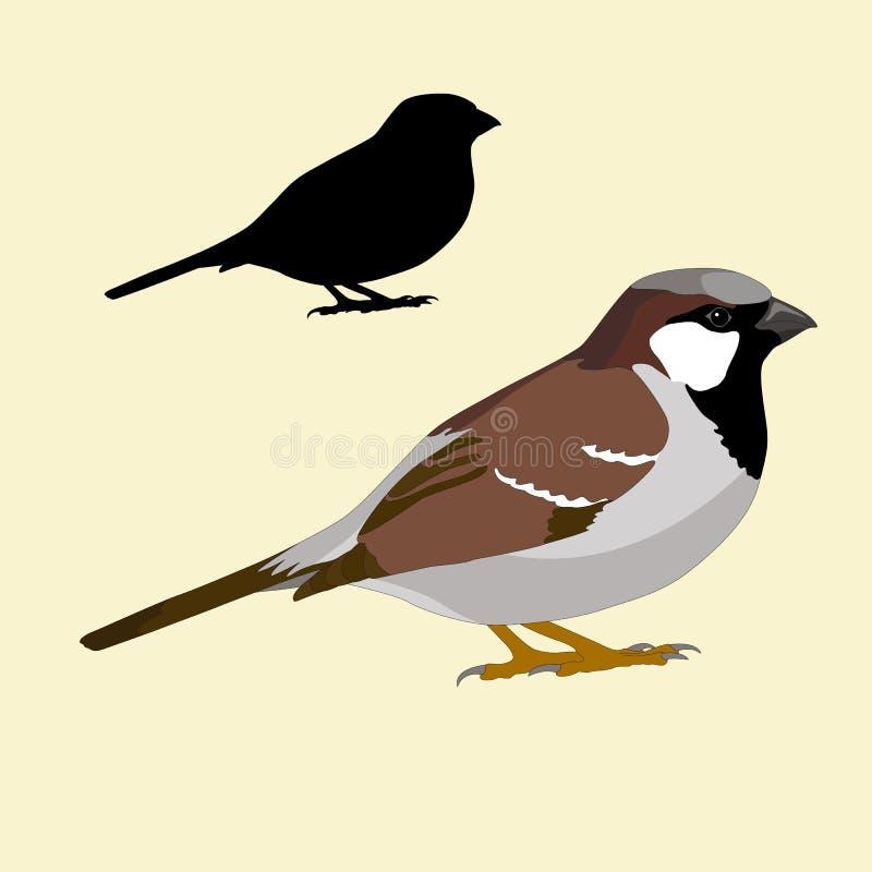 Het silhouet zwarte realistisch van de musvogel stock illustratie
