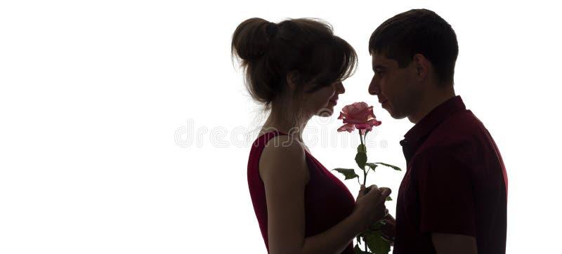 Het silhouetprofiel van jongelui koppelt in liefde op wit geïsoleerde achtergrond, man die een vrouw een roze bloem, conceptenlie stock afbeelding