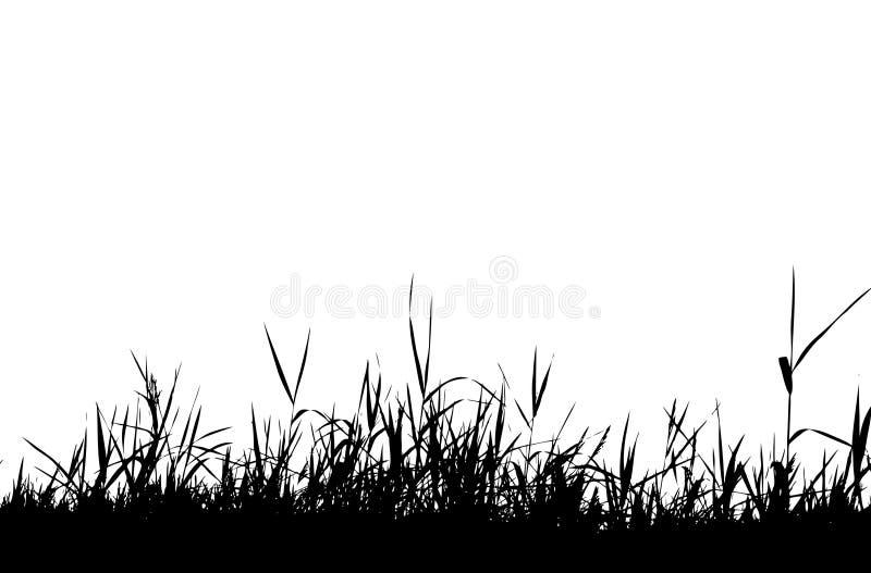 Het silhouetzwarte van het gras royalty-vrije illustratie