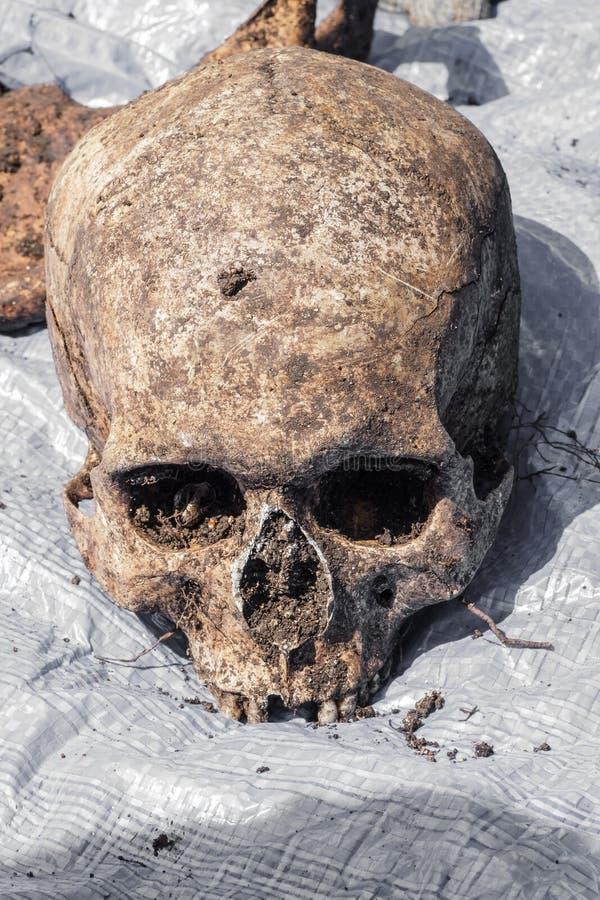 Het skelet blijft van een begraven onbekend slachtoffer stock afbeeldingen