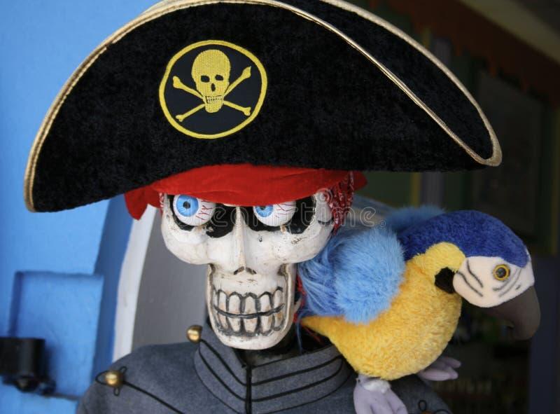 Het Skelet van de piraat met papegaai stock afbeelding