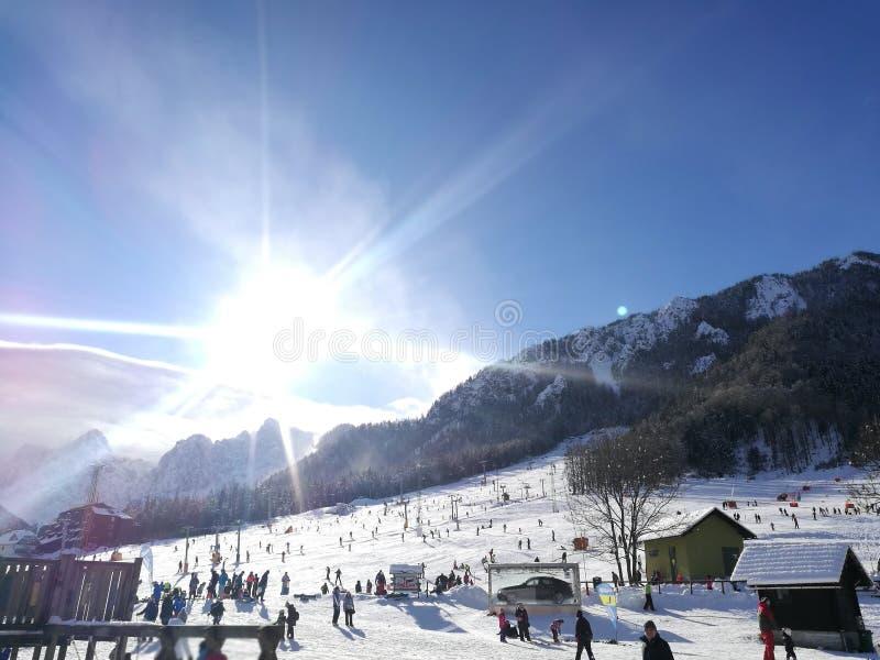 Het skiån stock foto