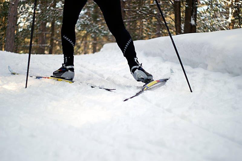 Het Skiån van de vleet stock foto
