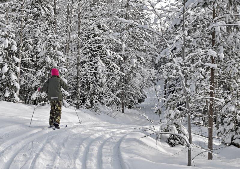Het skiån van het meisje stock fotografie