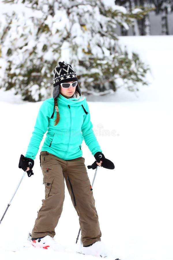 Het ski?en royalty-vrije stock afbeeldingen