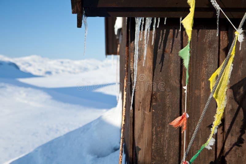 Het ski?en op Kungsleden stock fotografie