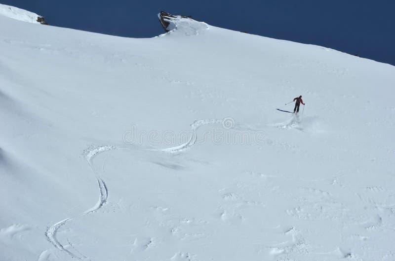 Het Ski?en van de wildernis royalty-vrije stock afbeeldingen
