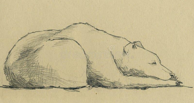 Het slapen draagt royalty-vrije illustratie