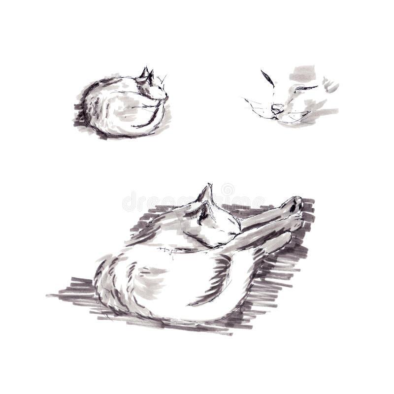 Het slapen witte kat - grafische schets royalty-vrije illustratie