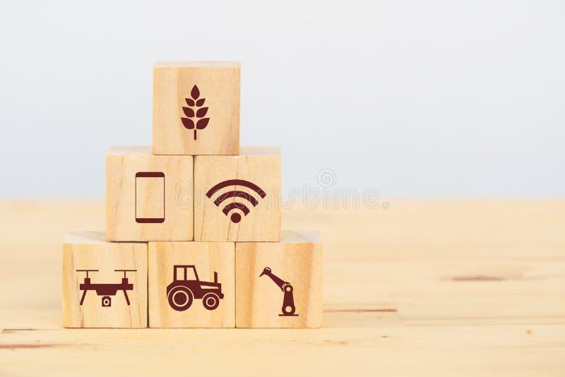 Het slimme landbouwbedrijf of landbouw futuristische technologieconcept, houten kubuspictogram verbindt, pictogram met inbegrip v stock foto