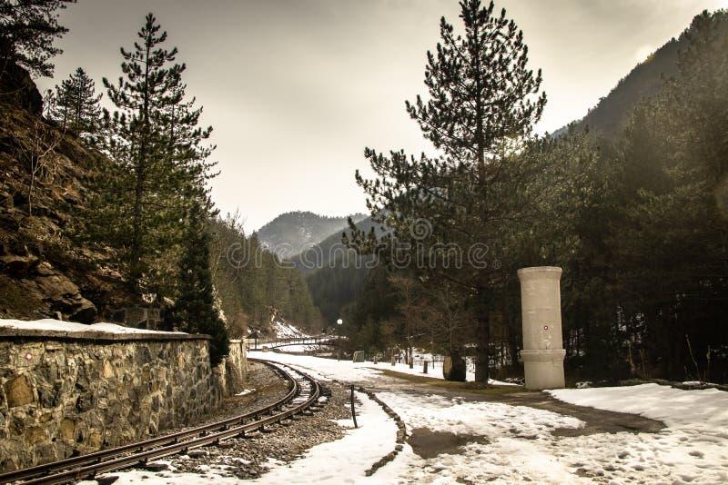 Het smalle spoor van de maatspoorweg door bos met mooie aard, steen, berg stock afbeelding