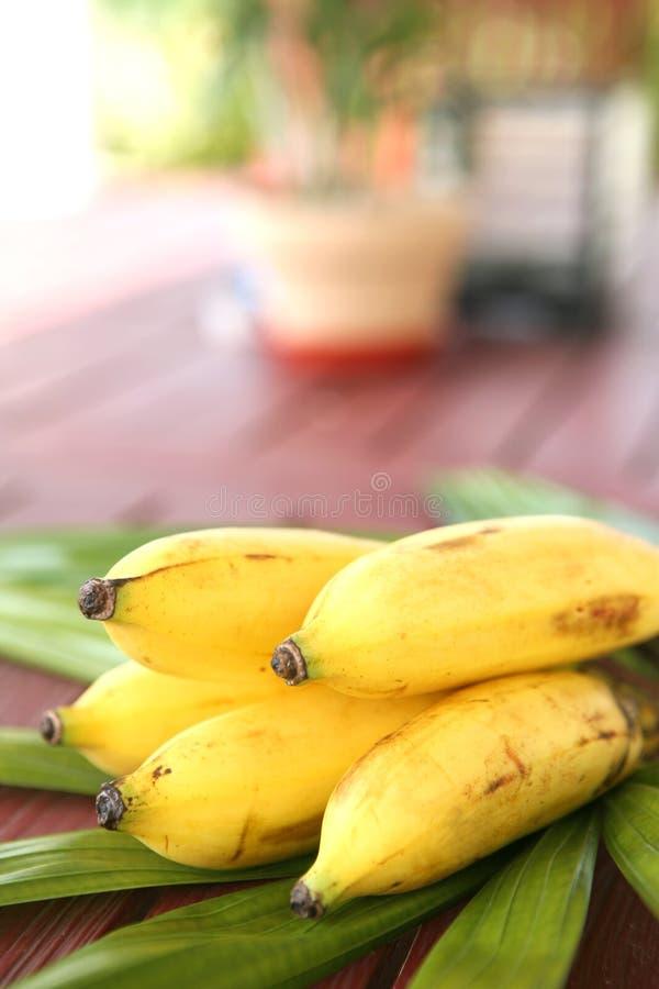 Het snoepje rijpt banaan stock fotografie