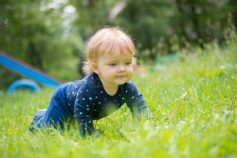Het snoepje weinig baby kruipt op alle fours op het gras royalty-vrije stock afbeelding