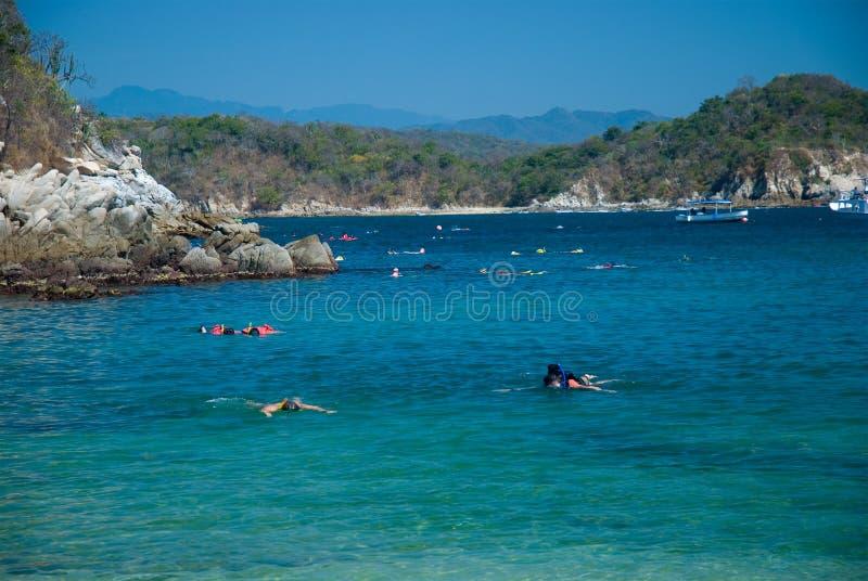 Het snorkelen bij een strand. Huatulco, Oaxaca, Mexico stock afbeelding