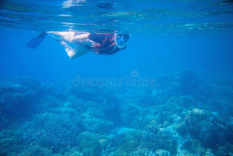 Het snorkelen meisje in volledig-gezichts snorkelend masker en vinnen Vrouw het zwemmen royalty-vrije stock fotografie