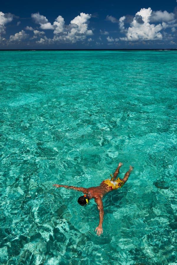 Download Het snorkelen van de mens stock afbeelding. Afbeelding bestaande uit zwem - 29504901