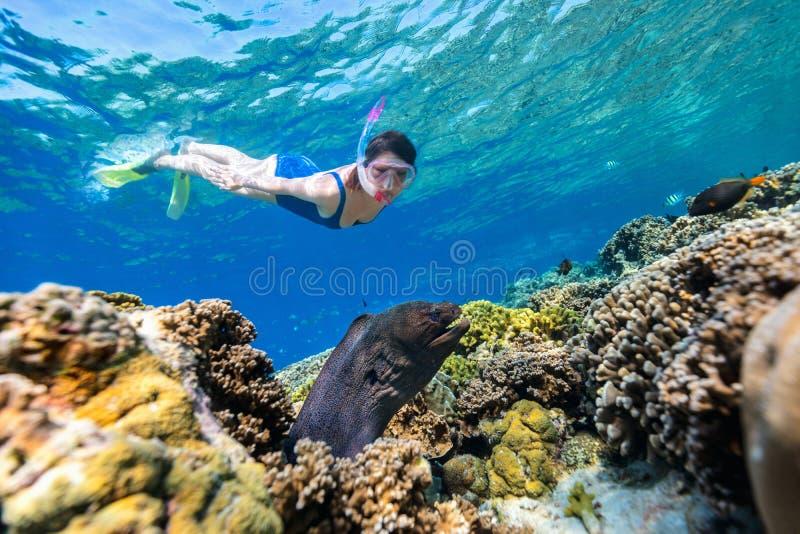 Het snorkelen van de vrouw stock foto's