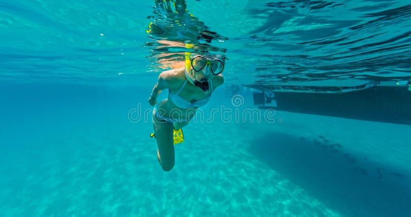 Het snorkelen vrouw die mooie oceaan onderzoeken sealife, onderwaterp stock fotografie
