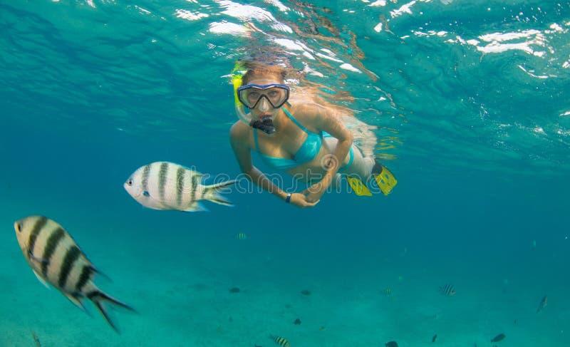 Het snorkelen vrouw die mooie oceaan onderzoeken sealife, onderwaterp royalty-vrije stock afbeelding