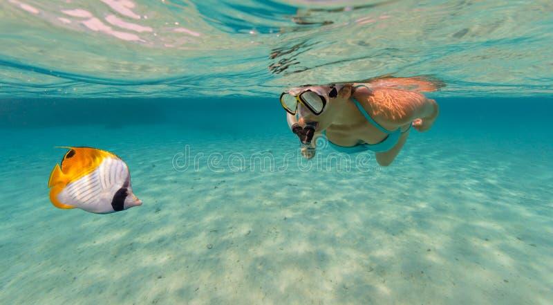 Het snorkelen vrouw die mooie oceaan onderzoeken sealife, onderwaterp stock foto