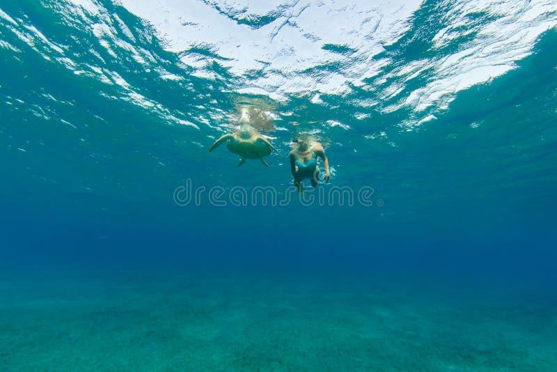 Het snorkelen vrouw met hawksbillschildpad, onderwaterfotografie royalty-vrije stock foto