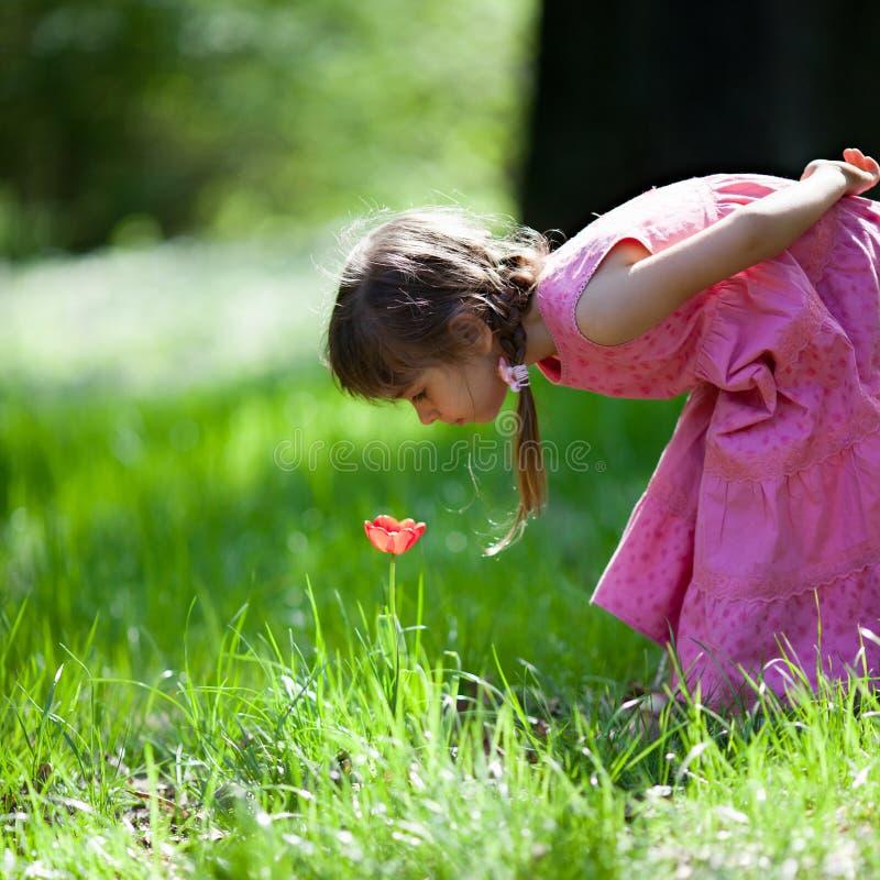 Het snuiven van het meisje bloem royalty-vrije stock foto's