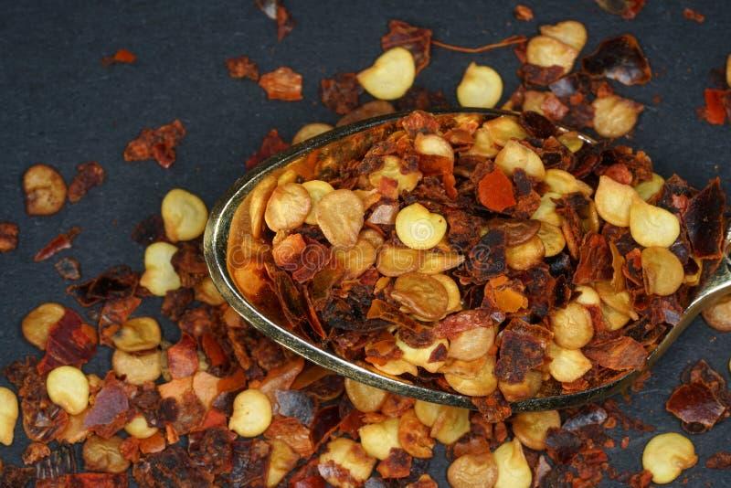 Het Spaanse peperkruid wordt ooit beschouwd het heetste als Spaanse peperkruid stock afbeelding