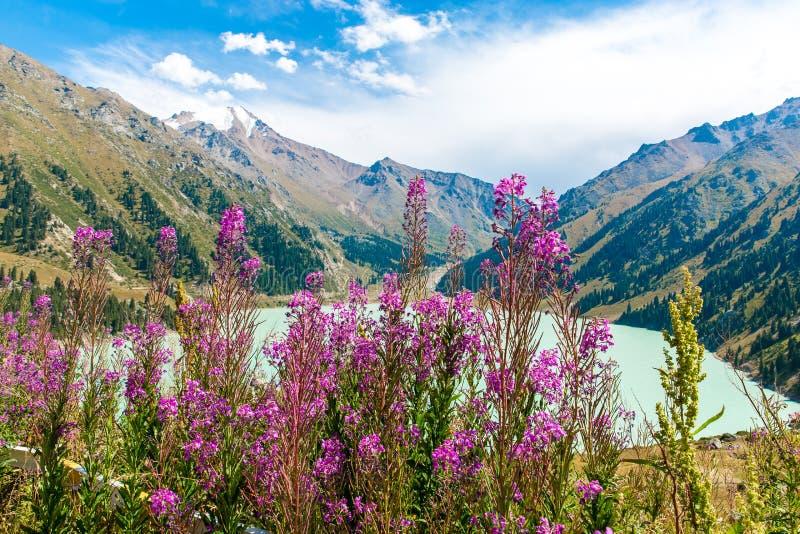 Het spectaculaire toneel Grote Meer van Alma Ata, Tien Shan Mountains in Alma Ata, Kazachstan, Azië stock foto