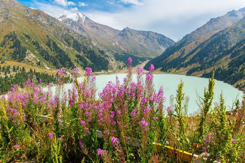 Het spectaculaire toneel Grote Meer van Alma Ata, Tien Shan Mountains in Alma Ata, Kazachstan, Azië royalty-vrije stock afbeeldingen