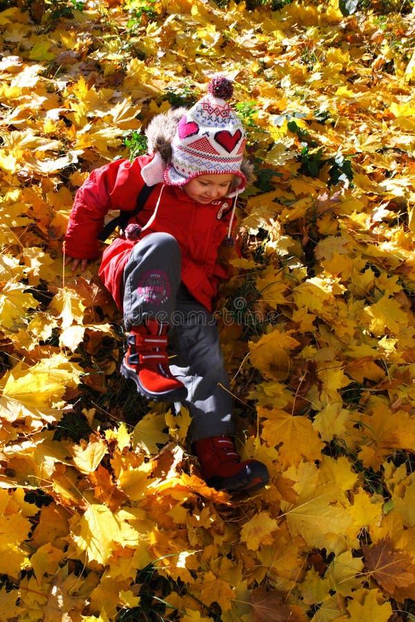 Het spel van de herfst royalty-vrije stock fotografie