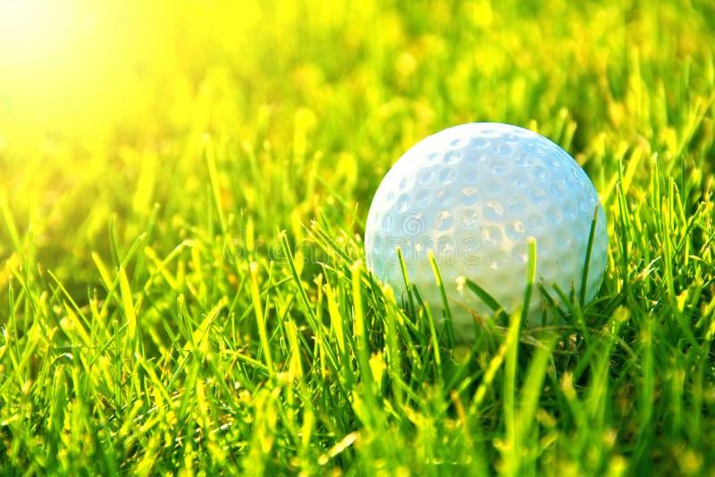 Het spel van het golf royalty-vrije stock foto's