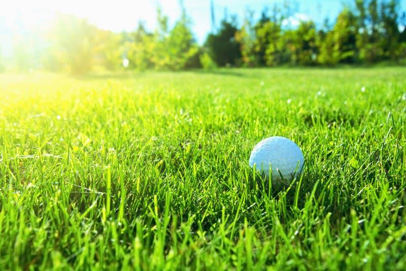 Het spel van het golf royalty-vrije stock afbeeldingen