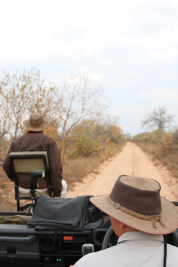 Het spelaandrijving van de safari stock foto