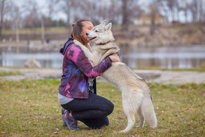 Het spelen met hond Siberische schor stock fotografie