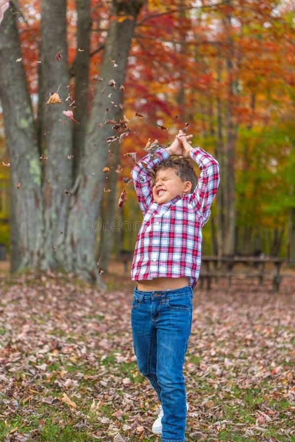 Het Spelen van de jongen in het Gras royalty-vrije stock afbeelding