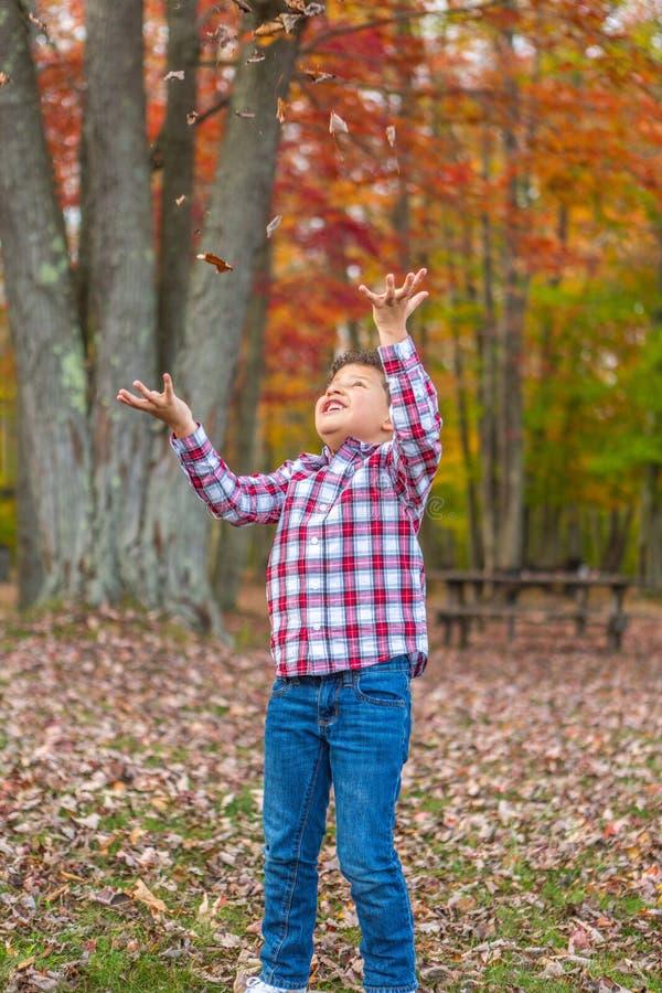 Het Spelen van de jongen in het Gras stock foto
