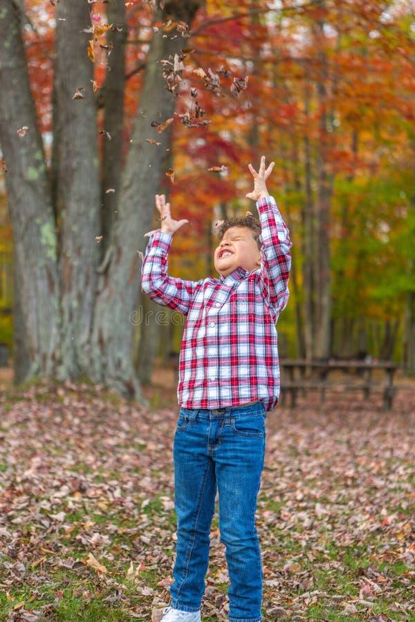 Het Spelen van de jongen in het Gras stock afbeeldingen