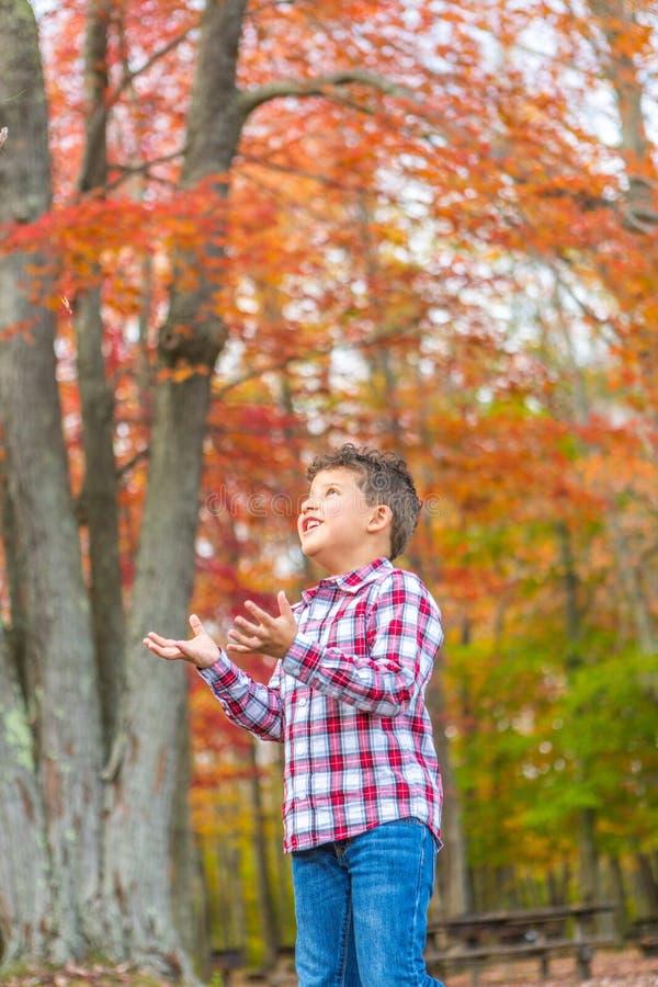 Het Spelen van de jongen in het Gras stock foto's